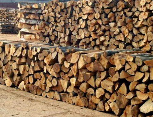 Граѓаните на Битола без огревни дрва, ги исплатиле, а никако да ги добијат