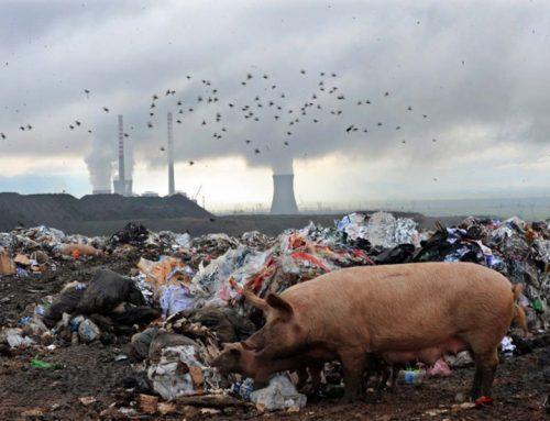 Помеѓу еколошкиот активизам и работничкото движење
