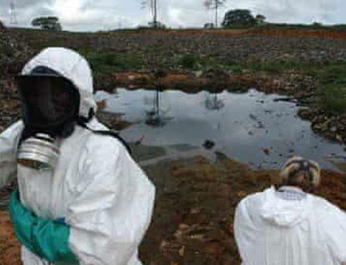 """Акционерот на """"Еуромакс Рисорсис"""" – """"Трафигура"""" прикривале катастрофално загадување од нафтен отпад во Африка"""