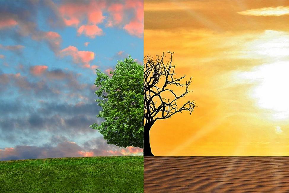 (Тед Риси) Зошто климатската криза е крајно сериозна егзистенцијална закана?