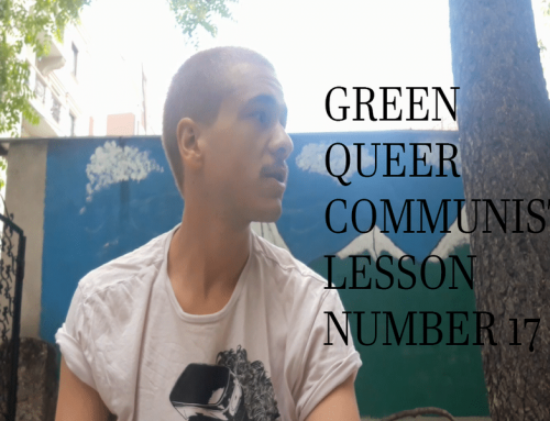 Green Queer Communist Lesson Number 17
